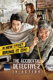 The Accidental Detective 2: In Action