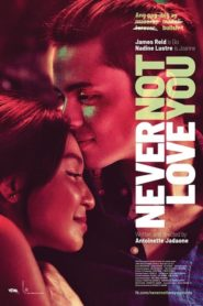 Never Not Love You 2018